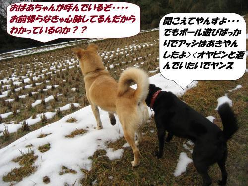 IMG_1631_convert_20140118092541.jpg