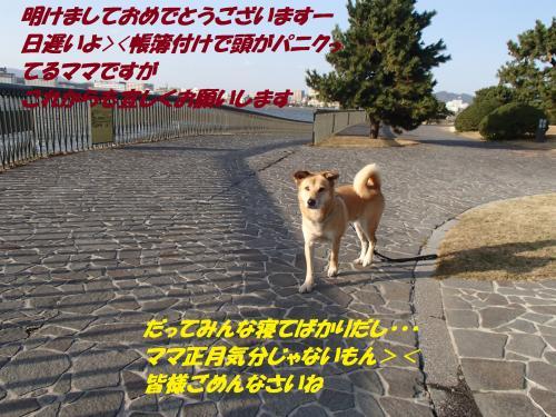 P1016391_convert_20140102064126.jpg