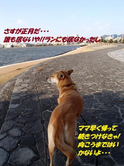 P1016393_convert_20140102064309.jpg