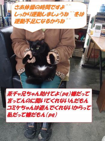 P1080063_convert_20140111071447.jpg