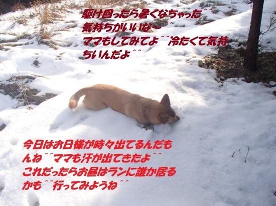 P1140110_convert_20140115074632.jpg