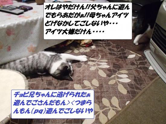 P1180172_convert_20140119071912.jpg