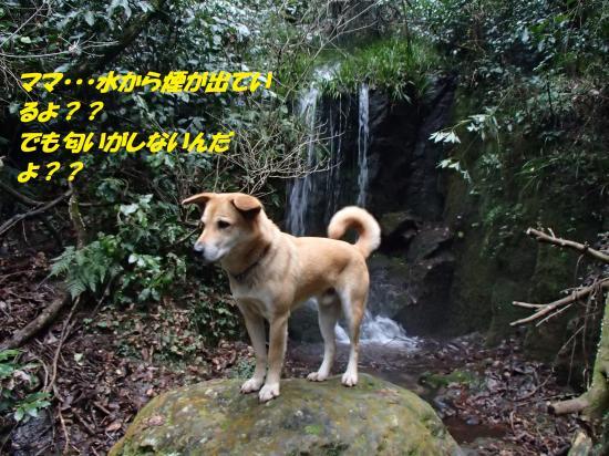 P1200194_convert_20140121074151.jpg