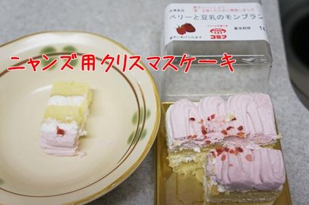 ニャンズ用クリスマスケーキ