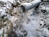 h24,1,31排水ドレンの排出先が凍結のコピー
