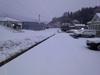 h24,2,17今日は雪降ったしのコピー