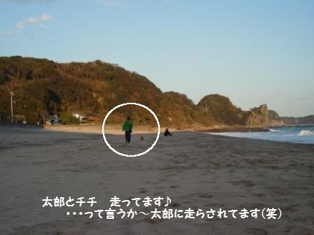 1RIMG2000_20120107152331.jpg