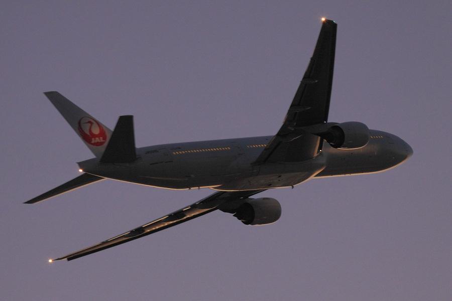 JAL B777-289 / JAL128 (JA009D)@エアフロントオアシス下河原沿道
