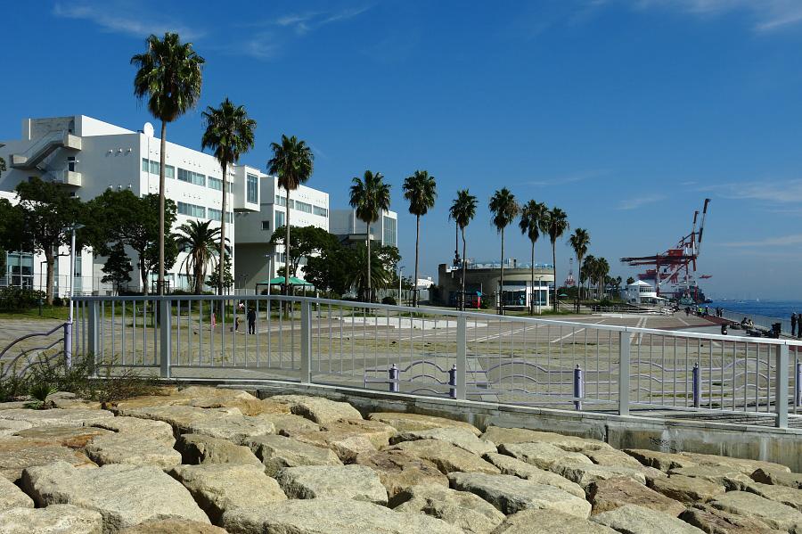 海辺の公園@六甲アイランドマリンパーク