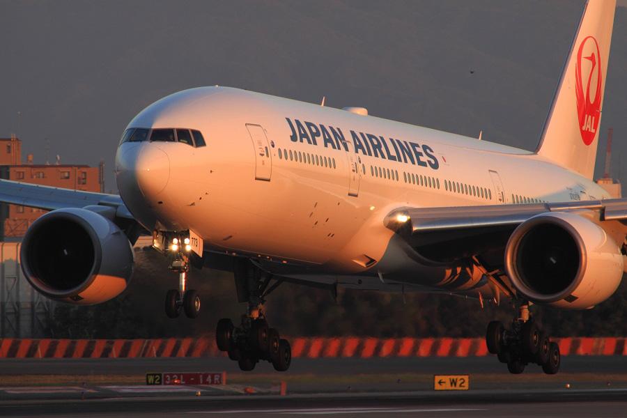 JAL B777-246 / JAL125 (JA773J)@伊丹スカイパーク