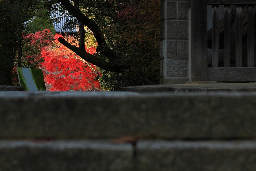 2014年11月27日・満願寺紅葉1