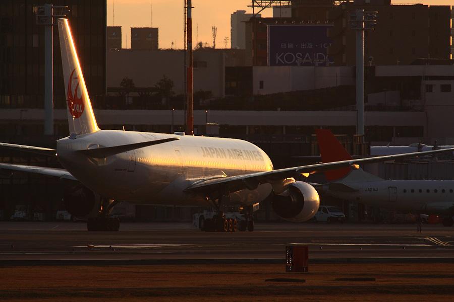 JAL B777-289 / JAL102 (JA008D)@RWY14Rエンド・猪名川土手