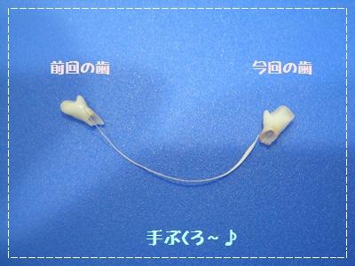 017_20110831212112.jpg