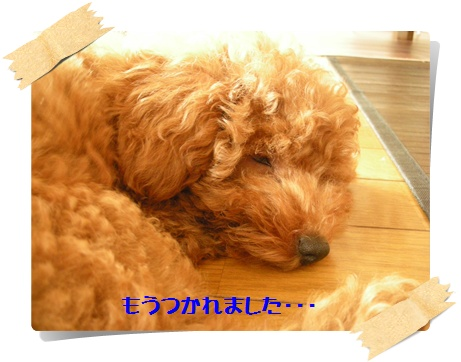 020_20110724101323.jpg