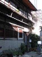 hiyashinsu5.jpg