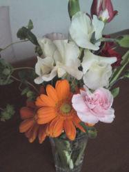 flower4.jpeg
