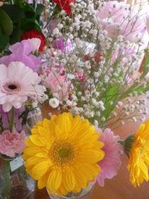 flower5.jpeg