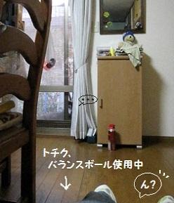 1_20111103201354.jpg