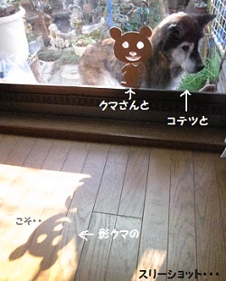 1_20111116215906.jpg