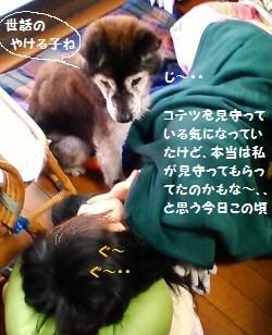 1_20111203175344.jpg