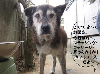 2_20111012200854.jpg