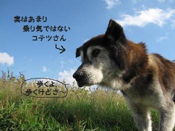 2_20111123212408.jpg