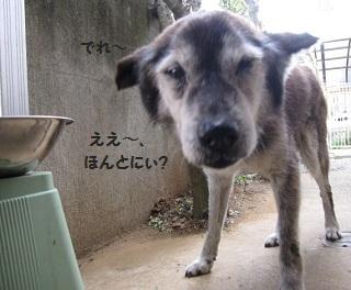 3_20111012200853.jpg