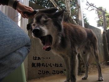 4_20111012200852.jpg