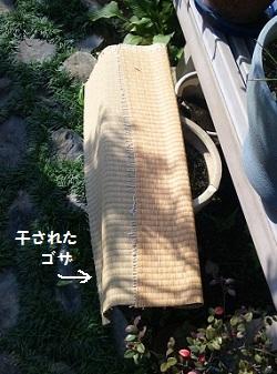 5_20111009172418.jpg