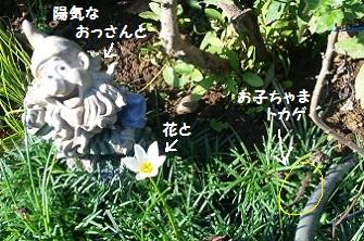 6_20111009172417.jpg