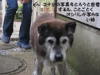 6_20111022211649.jpg