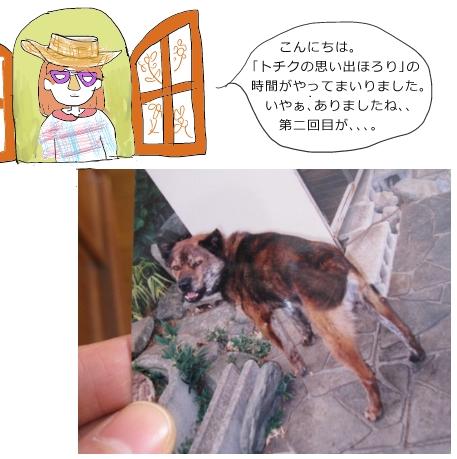 kotetu_20120412112119.jpg