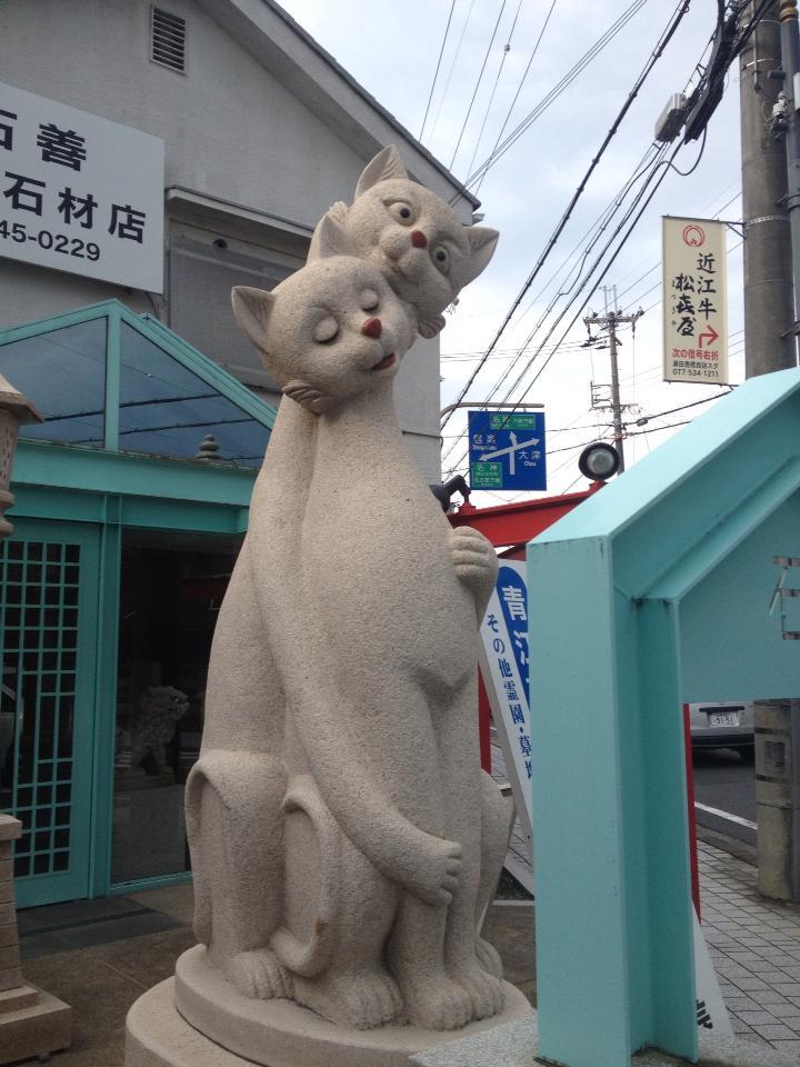0203nukonuko.jpg