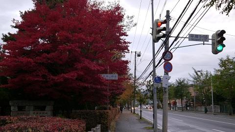 H24.秋 天神山緑地