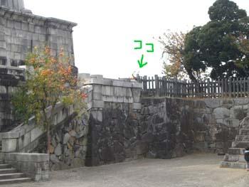 20101114004.jpg