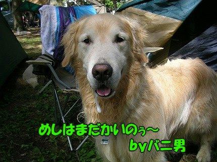 SANY7069_20100722103412.jpg