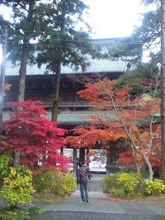 身延山久遠寺 紅葉2010.11.23