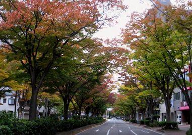 秋色のアーチ