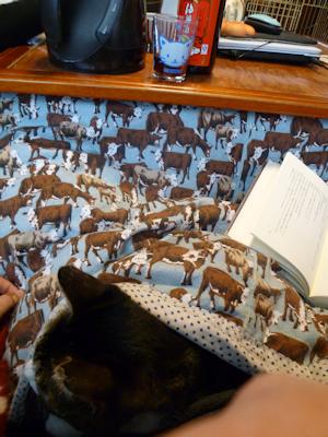 昼酒で膝猫で読書