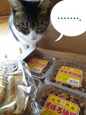 芋と納豆、猫は喰わぬ。。。