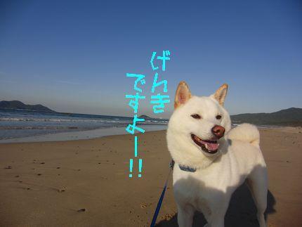 元気ですよー!! 海