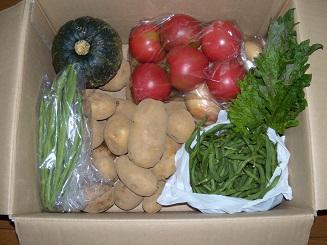 野菜1 001