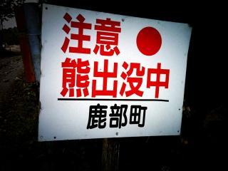 蜀kuma咏悄 3