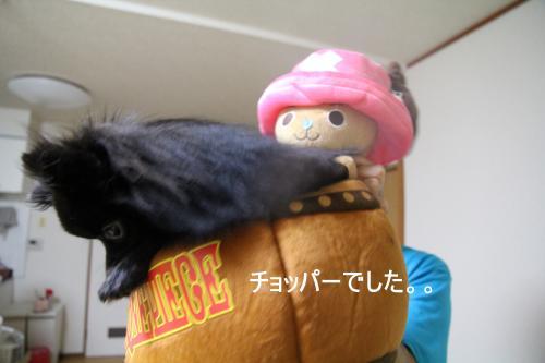 樽2_convert_20110822164246