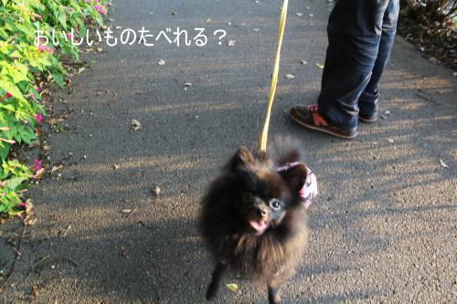 かっぱ+1_convert_20110828222320