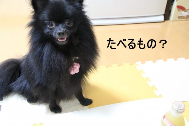 Ringo+060_convert_20110906223748