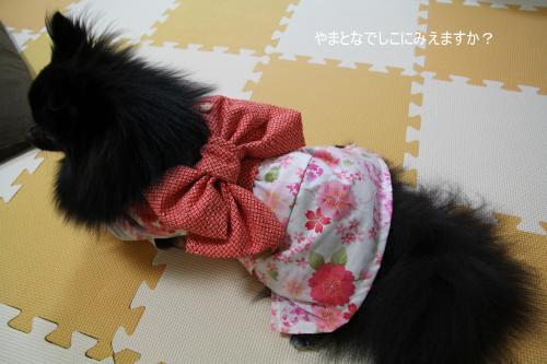 yukata+04_convert_20110812235056.jpg