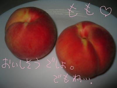 IMG_5237-s.jpg