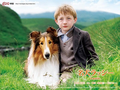 lassie-s.jpg