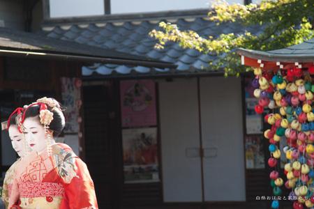 20111122-_MG_6040.jpg